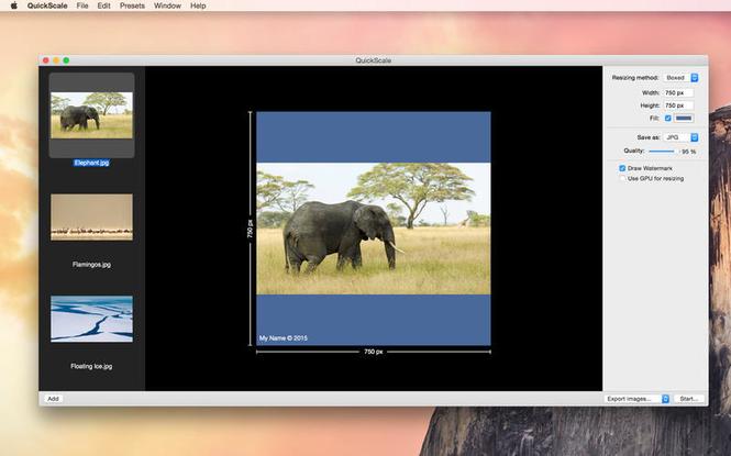 Quickscale Screenshot
