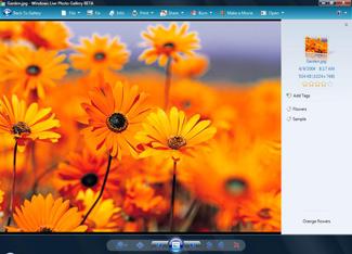 Windows Live Photo Gallery Screenshot