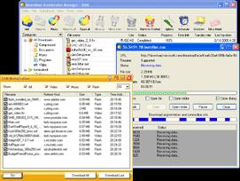 Download Accelerator Manager Screenshot