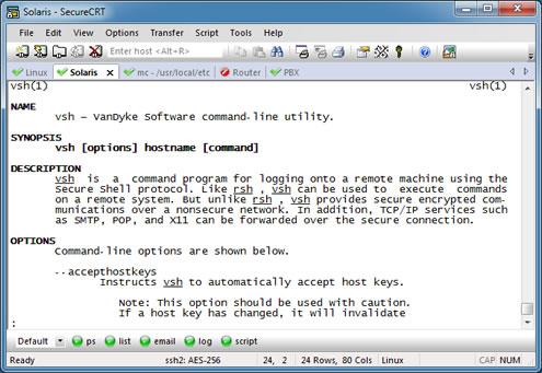 SecureCRT Screenshot