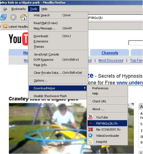 Video DownloadHelper Screenshot