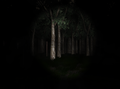 Slender: The Eight Pages 2