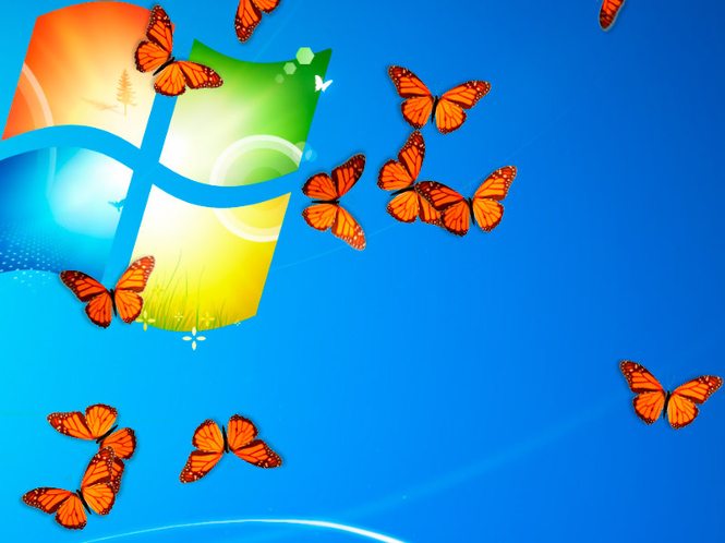 Butterfly On Desktop Screenshot