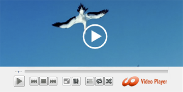 HD Video Media Player for Mac OSX Screenshot