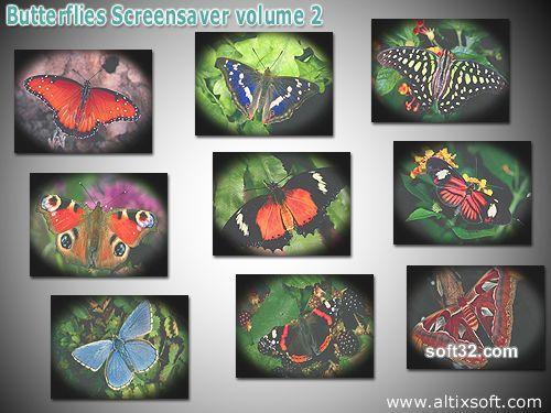 Butterflies Screensaver volume 2 Screenshot 2