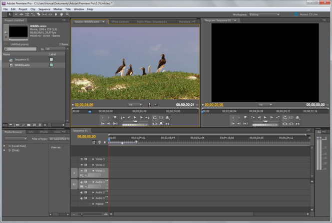 Adobe Premiere Pro Screenshot 1