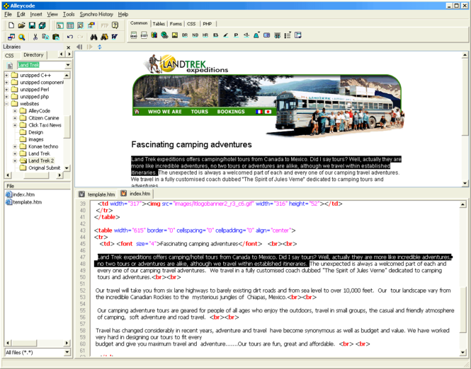 Alleycode HTML Editor Screenshot