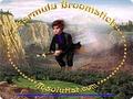 Formula Broomstick 1