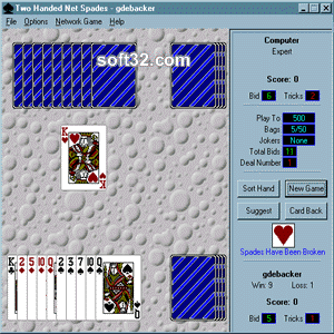 Two Handed Net Spades Screenshot 3