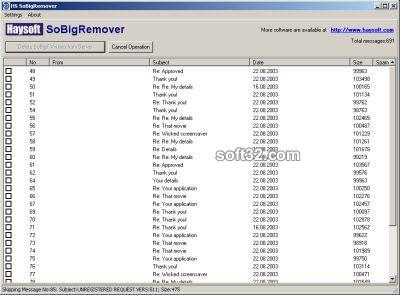 HS SoBigRemover Screenshot 3
