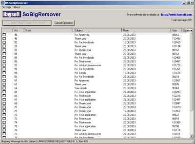 HS SoBigRemover Screenshot