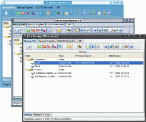 File Backup Watcher Professional Screenshot