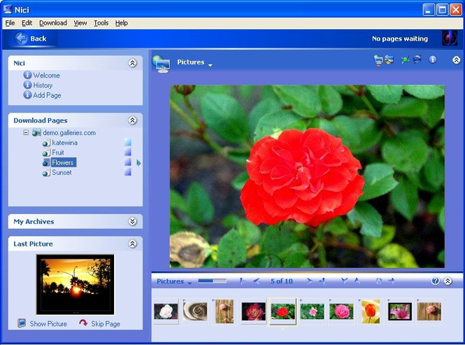 Nici Picture Downloader Screenshot