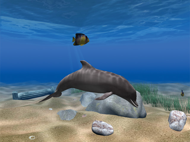 Dolphin Aqua Life 3D Screensaver Screenshot