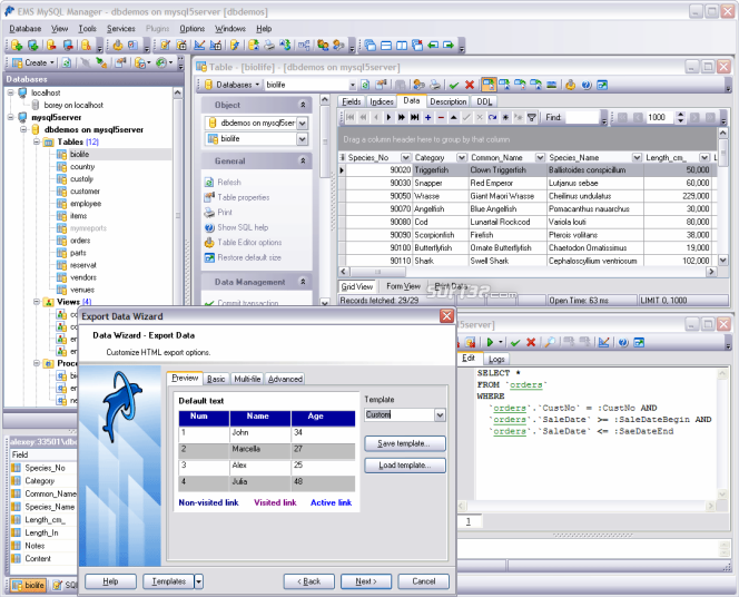 EMS SQL Manager for MySQL Freeware Screenshot