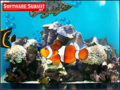 Aquarium Screensaver by Server Connectix 1