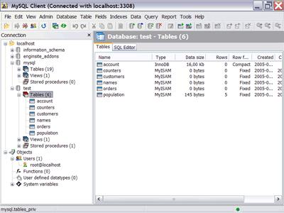 EngInSite MySQL Client Screenshot