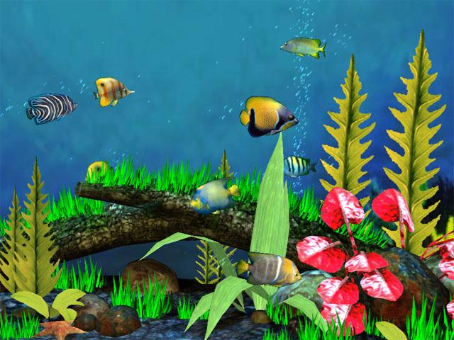 Astro Gemini Software Fish Aquarium 3D Screensaver Screenshot 1