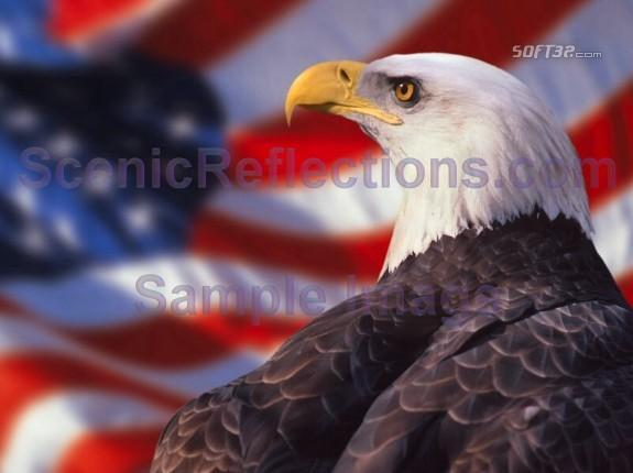 Patriotic Screen Saver Screenshot