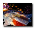 3D Fireworks Screensaver Screenshot 1