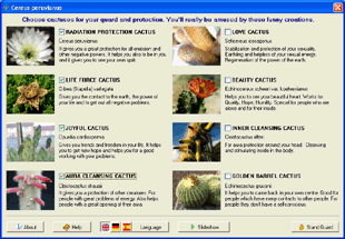Cactus Emulator Screenshot