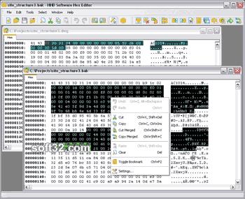 Hex Editor Screenshot 2