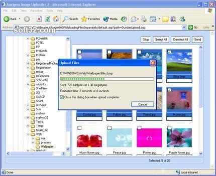 Aurigma Image Uploader Screenshot 3