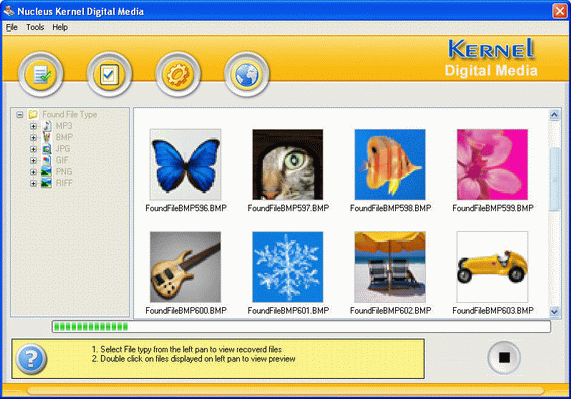 Nucleus Kernel Digital Media Recovery Software Screenshot 1