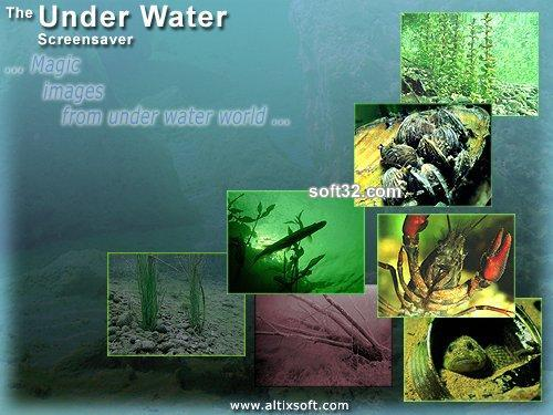 Under Water Screensaver Screenshot 2
