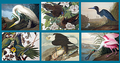 Best of Audubon 1