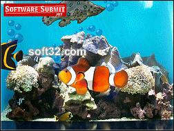 Miracle Breast Gain Aquarium Screenshot 2