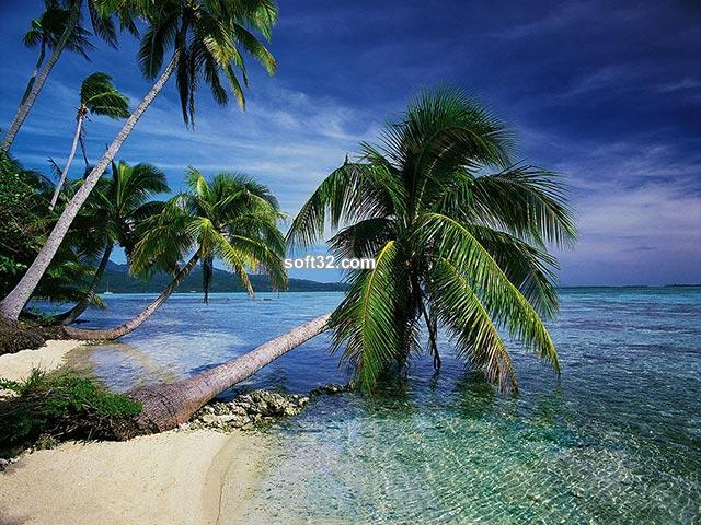 dArt Tropical Islands vol.1 Screenshot 3