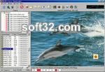 Amor Photo Downloader Screenshot