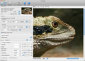PhotoZoom Pro 4 for Mac 1