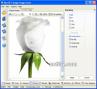 ReaTIFF - Image converter to TIFF 3