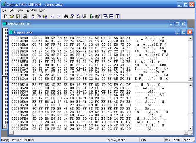 Cygnus Hex Editor FREE EDITION Screenshot 1