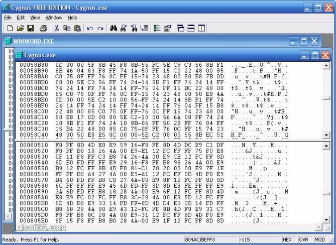 Cygnus Hex Editor FREE EDITION Screenshot 2