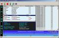 Monitor Wolf 1