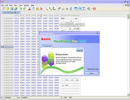 MicroAdobe Hex Editor Screenshot