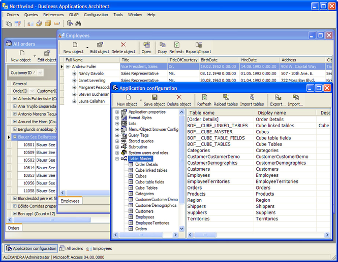Business Applications Architect Screenshot