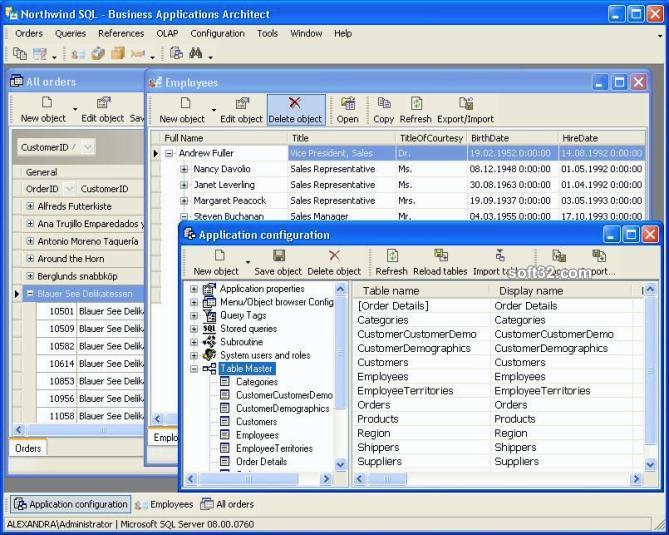 Business Applications Architect Screenshot 3