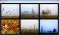 Atrise Foggy Autumn 1