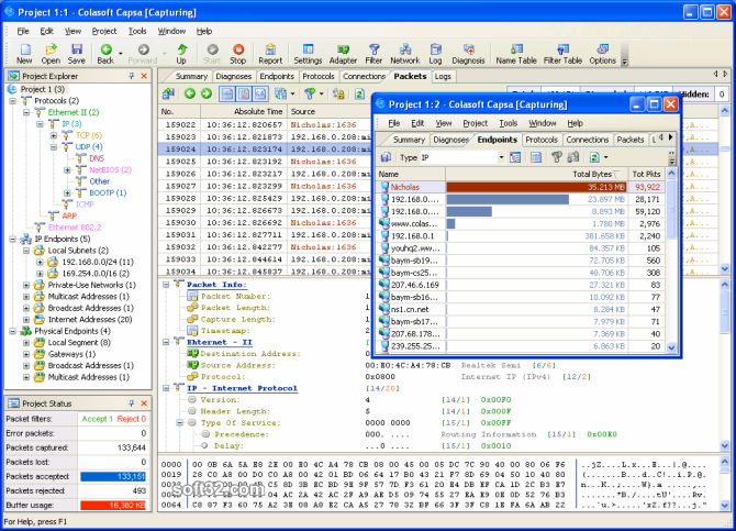Colasoft Capsa Professional Screenshot 4