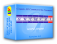 AnyMini W: Word Count Program 3