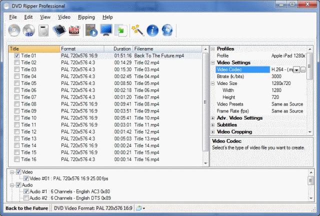 Jesterware DVD Ripper Professional Screenshot 1