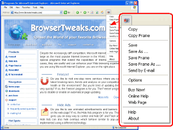 IE Screenshot Pro Screenshot 1