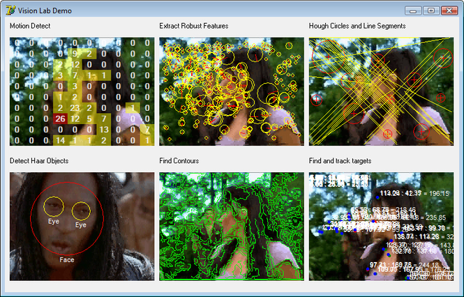 VisionLab VCL Screenshot