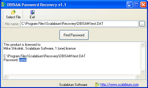 DBISAM Password Recovery Screenshot