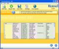 Nucleus Kernel DBF Repair Software 1