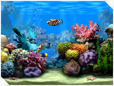 Living Marine Aquarium Screenshot